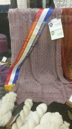 Janet Allsworth's stunning spinning and knitting rightly earned her the RAS Spinning Sash.